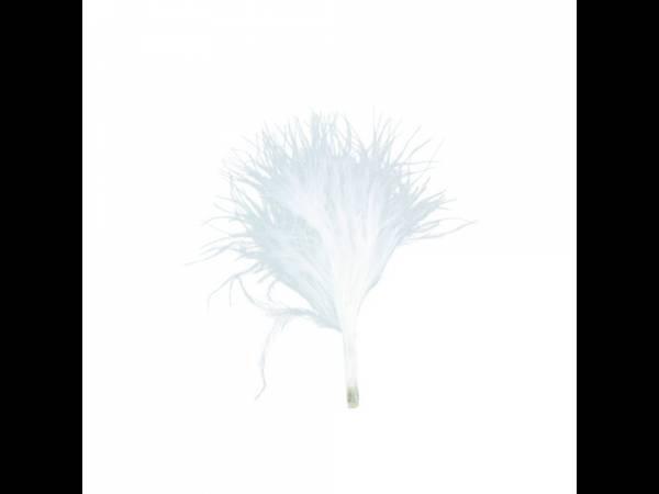 plumes de couleur blanches
