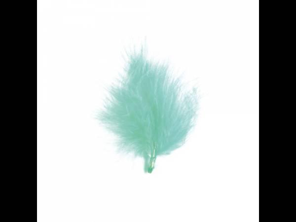 plumes de couleur turquoise