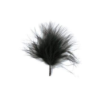 20 plumes noires