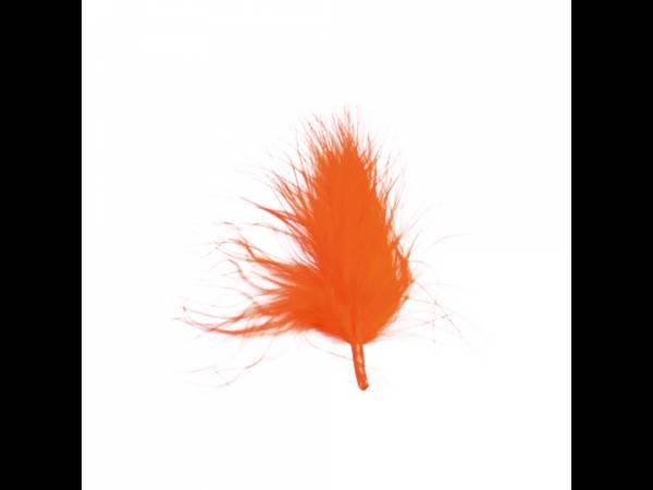 plumes de couleur orange