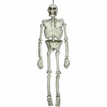 Squelette en plastique 137cm