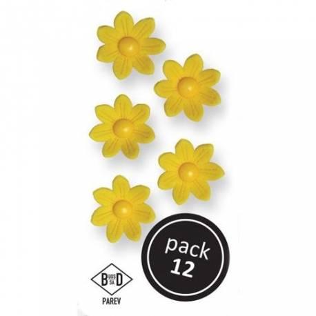 Boîte de 12 marguerites en sucre de couleur jaune pour décorer vos dessertsDimensions : Ø 2.4 cm