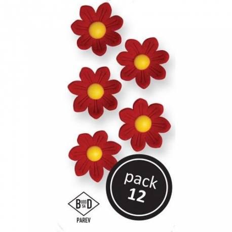 Boîte de 12 marguerites en sucre de couleur rouge pour décorer vos dessertsDimensions : Ø 2.4 cm