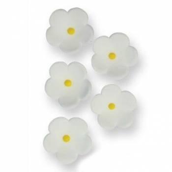 30 Fleurs en sucre blanche Ø 2cm