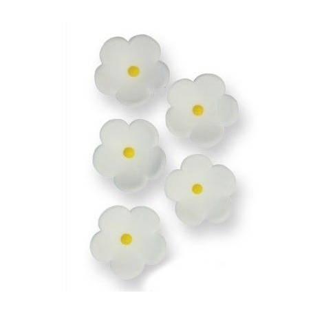 Boîte de 30 petites fleurs en sucre de couleur blanche pour décorer vos dessertsDimensions : Ø 2 cm