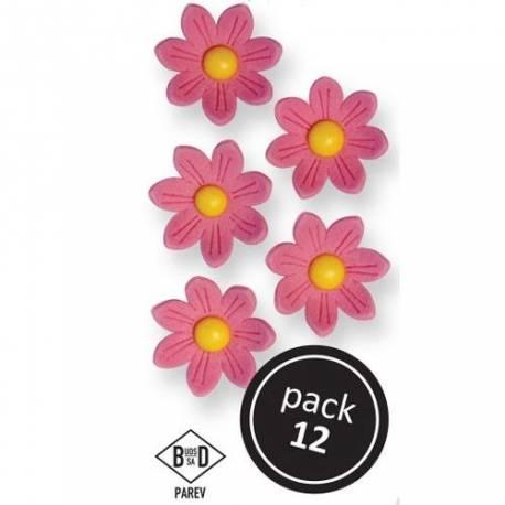 Boîte de 12 marguerites en sucre de couleur rose pour décorer vos dessertsDimensions : Ø 2.4 cm