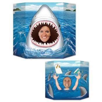 Point photos Requin