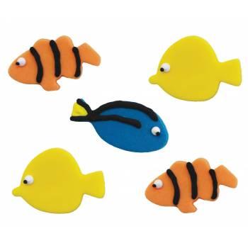 poissons exotique en sucre