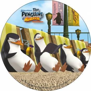 Disque azyme Pingouin de Madagascar 2