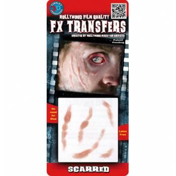 Transfert 3D scarifications PM