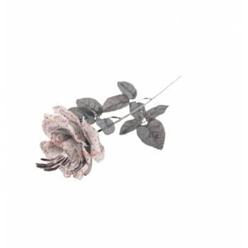 Rose blanche sanglante squelette