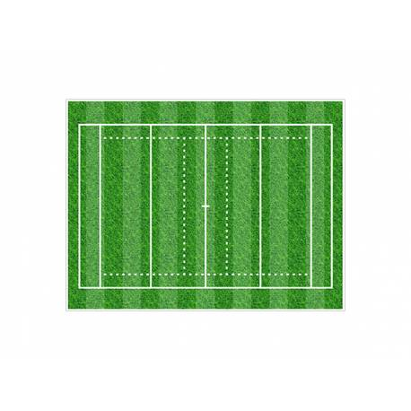 Photo comestible rectangle decor terrain Rugby pour la décoration de votre gâteau d'anniversaire rectangle (format A4). Simple à...