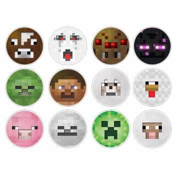 12 Mini décors sur sucre Minecraft