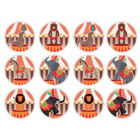 12 mini disques sucre décor cirque pour la décoration de vos petits gâteaux et cupcakes d'anniversaire. Ces mini disques ne possèdent...