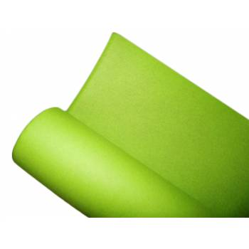 Nappe intissée vert anis