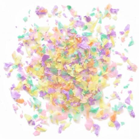 Ce sachet de 20 g de confettis est en papier de soie ignifugé.  Mélange de confettis couleur pastel:menthe, pêche, jaune pâle, rose et...