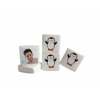 Guimize personnalisé photo décor Pingouin