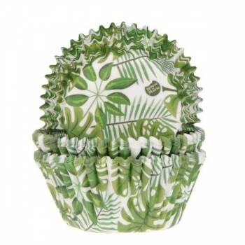 50 Caissettes plantes vertes tropicales