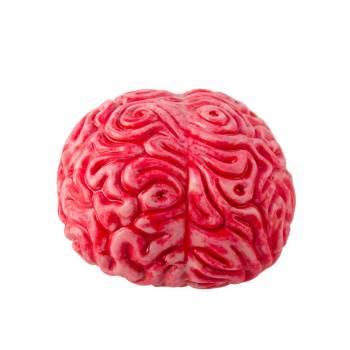 Cerveau en plastique