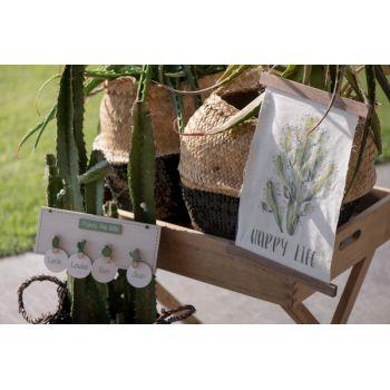 Pancarte fanion cactus