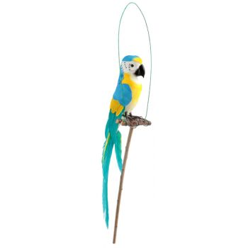 Perroquet sur perchoir bleu