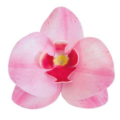 10 Orchidées rose en azyme comestible pour décorer vos gâteaux Dimensions d'une fleur: 8.5cm x 7.5cm