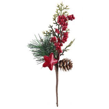 Branche de baie de Noël