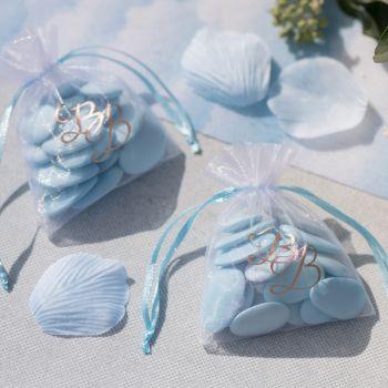6 Sachets organdi Bleu Ciel BB