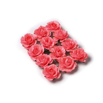 12 Roses corail sur tige 3.5cm