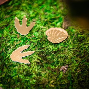 Chemin de table végétal mousse naturel