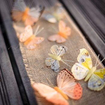 Assortiment 10 papillons dégradé jaune orange