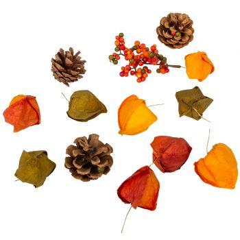 Assortiment décors d'automne
