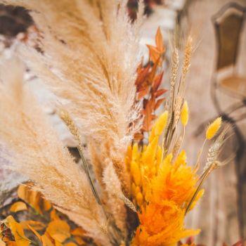 6 Maxi épis de plumeaux rose 75cm