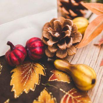 Assortiment décors d'automne courges et pommes de pin