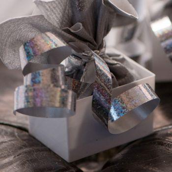 Bolduc holographique argent 25M