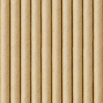 10 Pailles papier kraft