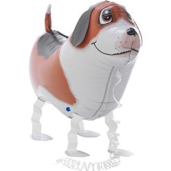 Ballon hélium copain chien