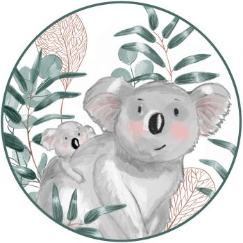 Disque sucre Koala