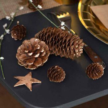 Assortiment Pommes de pins et étoiles en bois