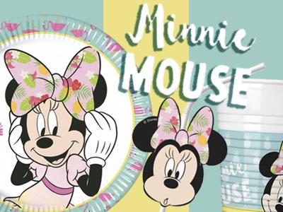Deco anniversaire Minnie
