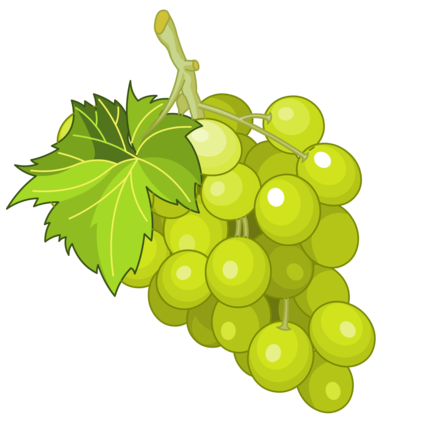 clipart-grappe-raisin_render.png