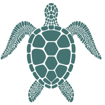 tortue-adulte-clipart-1500x1500_render.png